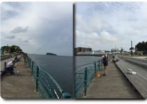 横須賀市海辺つり公園・足場と柵