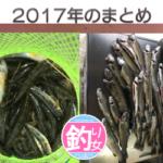 2017年今年のまとめ